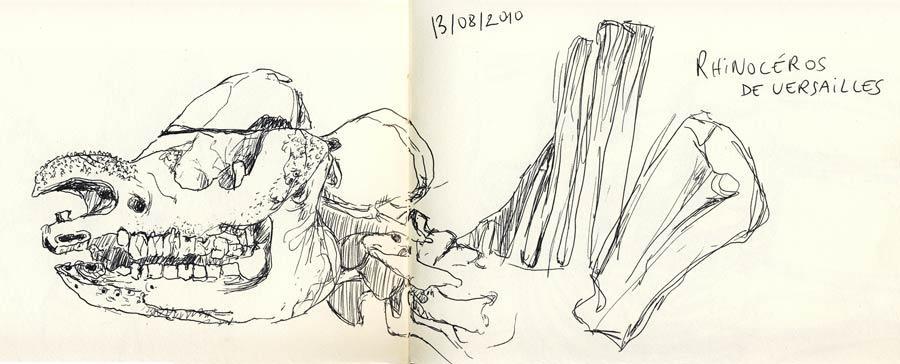 Galerie de Paléontologie paris