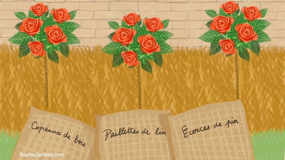 copeaux_paillage_illustration_zandotti illustration zandotti illustratrice freelance paris pastel vidéo illustrée