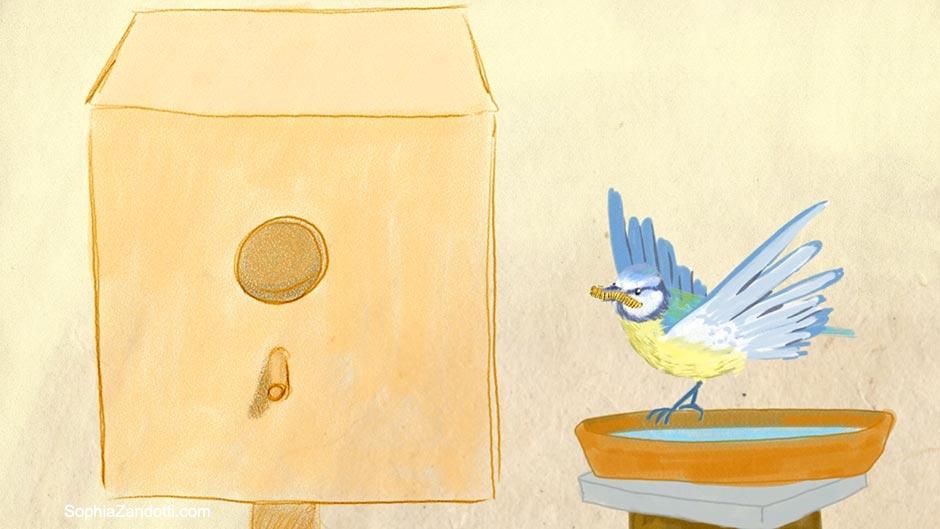 nichoir_mesange_illustration_zandotti illustration zandotti illustratrice freelance paris pastel vidéo illustrée
