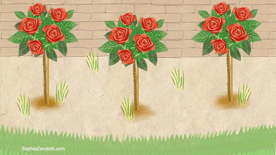 rosiers_illustration_zandotti illustration zandotti illustratrice freelance paris pastel vidéo illustrée