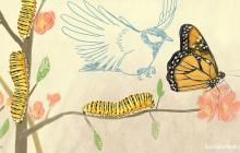 chenille mesange illustration zandotti